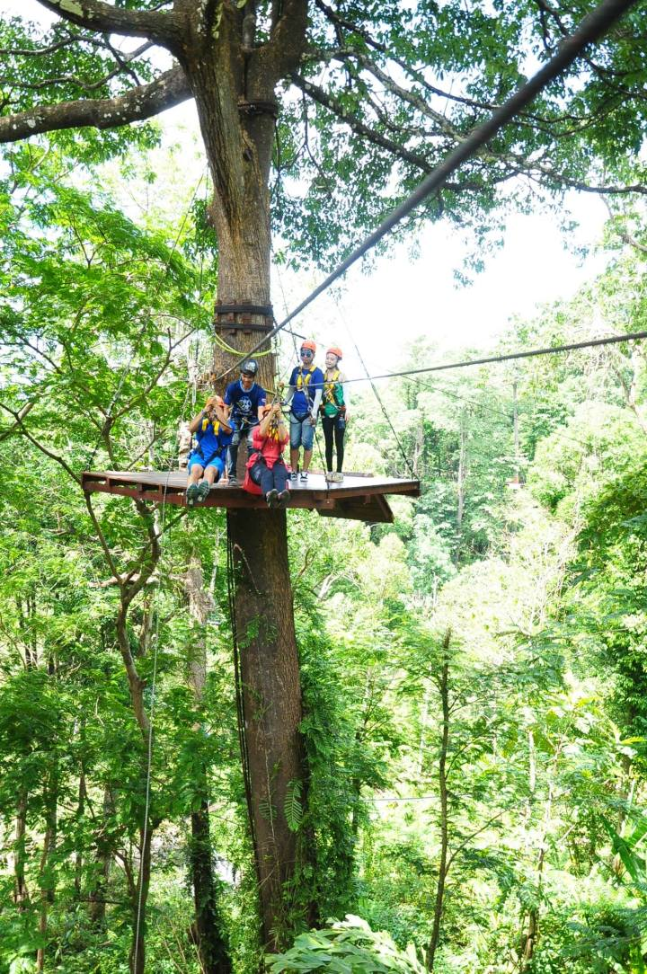 We are a Tribe, A tribe which is happily zip lining together ….from one tree to the next tree to thenext!